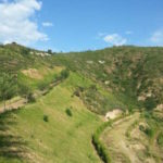 Slope Greening for Mining - High Performance Reinforced Ecological Substrate